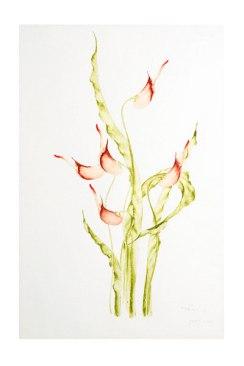 flower_RET